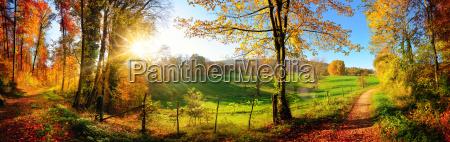 incantevole paesaggio in autunno soleggiato panorama