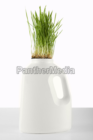 grass growing out of a plastic