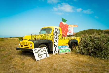 estate trasporto comunicazione frutta allaperto fattoria