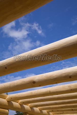 industria legno futuro pino canada allaperto