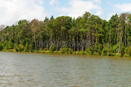 slowinski landscape
