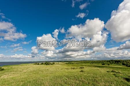 slosloinski landscape