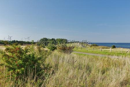 fehmarn island east coast dyke landscape