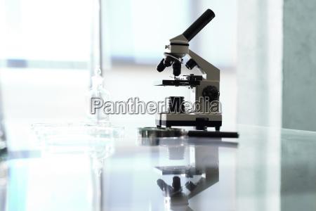 laboratorio di biotecnologia al microscopio