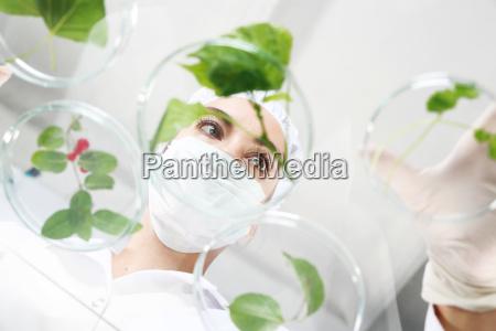 scienza ricerca laboratorio strutture impianti biotecnologia