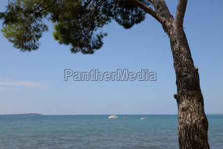 coast in fazana istria croatia