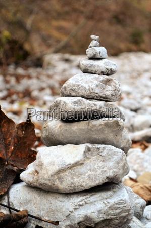 pietra sasso foglie foresta natura pietre