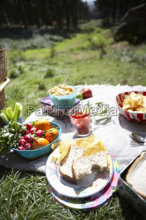 cibo vacanza vacanze estate cestino allaperto