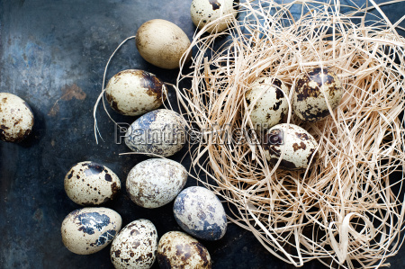natura morta cibo benessere nido tradizionale
