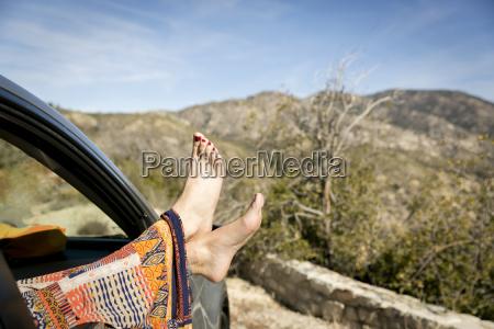 donna relax femminile albero auto veicolo