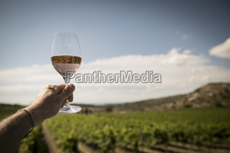 mature man holding up wine glass