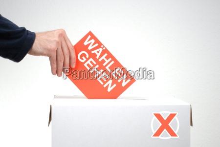 go select scheda elettorale con
