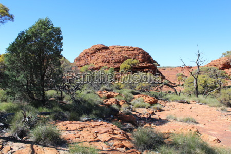 landscape at the kings canyon in