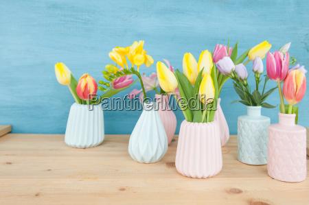 colorato fiore fiori tulipani