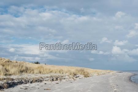 denmark hals dunes and beach