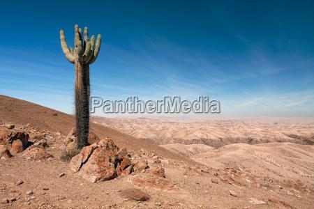 blu viaggio viaggiare colore deserto selvaggio
