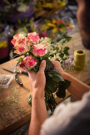 accordo fiore pianta rosa virile mascolino