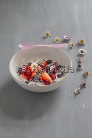 cibo salute interno foto di interni