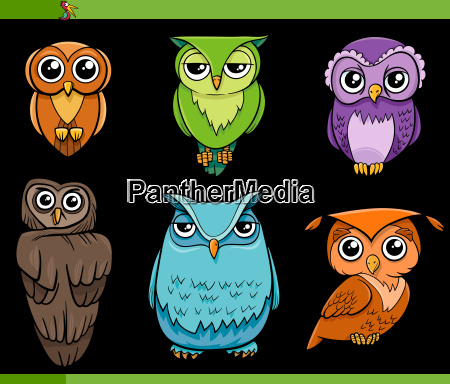 gufo uccelli personaggi cartone animato set