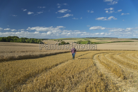 young farmer walking through harvested field