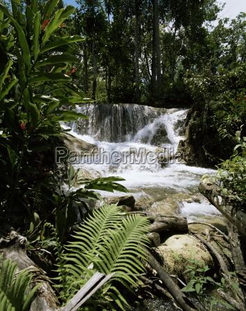 dunns river falls giamaica antille caraibi