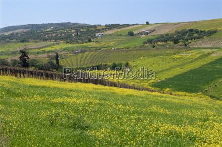 viaggio viaggiare agricoltura grecia europa orizzontale