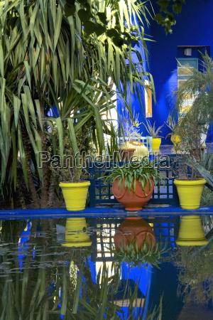 giardino africa botanica allaperto nord africa