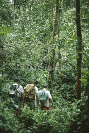 a small group of people trekking