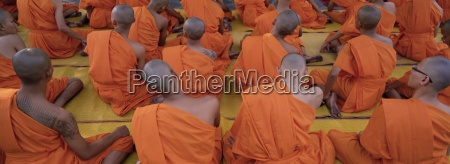 back view of seated buddhist monks