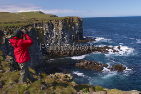 birdwatching in penisola langanes scogliere di