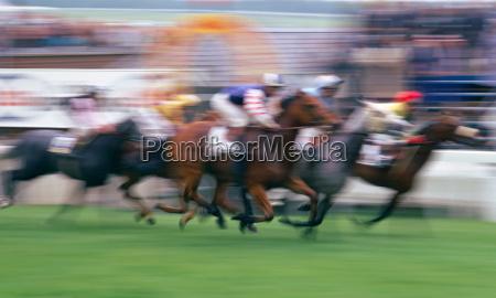 soft focus fuoristrada a epsom races