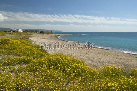 spiaggia appartata in primavera vicino a