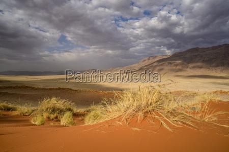 deserto africa namibia orizzontale allaperto nuvoloso