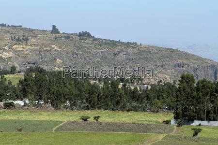 africa agricoltura campo campi prati fattoria