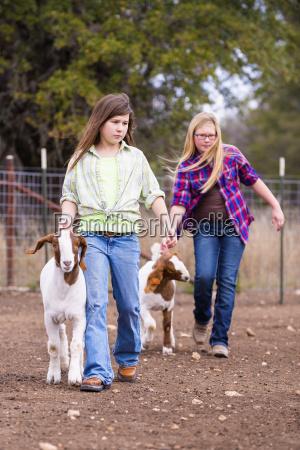 persone popolare uomo umano andare animale