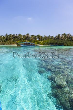maldive sud male atoll embudu le