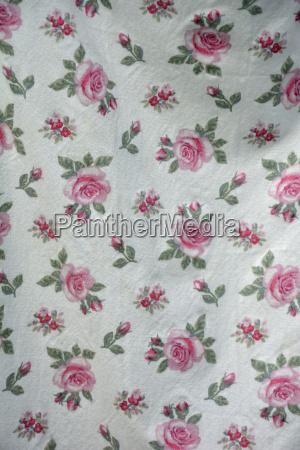 fiore pianta rosa fioritura fiorire baviera