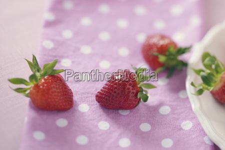 freschezza frutta fotografia foto fragola al