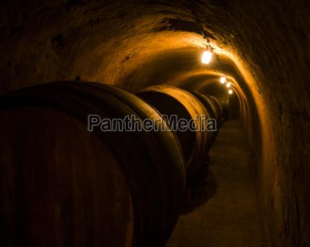 austria bassa austria quartiere del vino