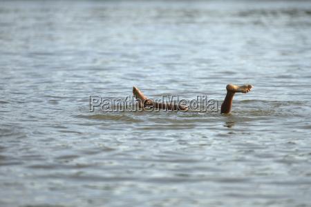 brasile itaituba pimental gambe di immersioni