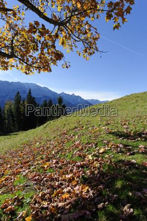 germany bavaria garmisch partenkirchen werdenfelser land