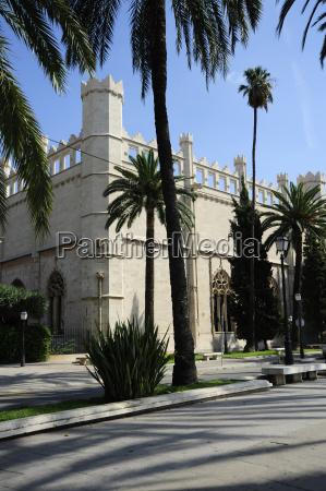 spain mallorca palma sagrera promenade and