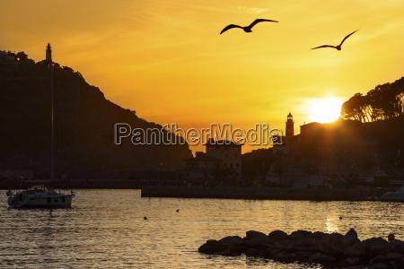 spain mallorca view of port de
