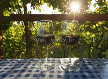 bicchiere viaggio viaggiare agricoltura austria luce