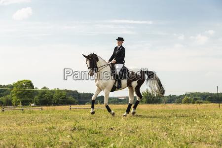 risata sorrisi tempo libero cavallo cappello