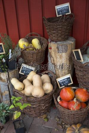 verdure miste biologiche in cesti di