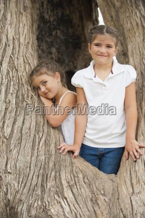 risata sorrisi albero ritratto allaperto corteccia