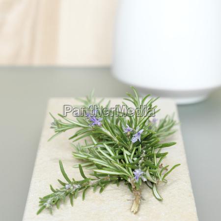 spezia decorazione aromatizzare condire rosmarino semplicita