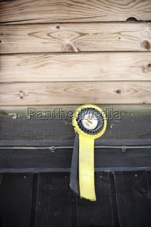 lavagna pannello dettaglio marrone equitazione medaglia