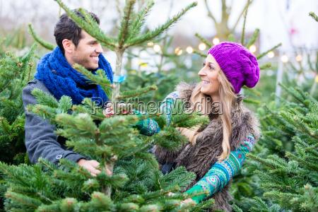 donna e uomo che acquista albero